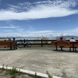Bay Trail Opens Around Albany Race Track