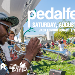 Top 5 Things To Do at Pedalfest